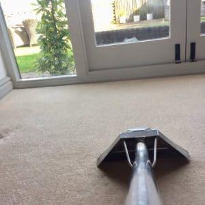 carpet-min