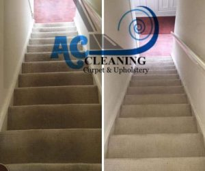 local Carpet cleaning stoke