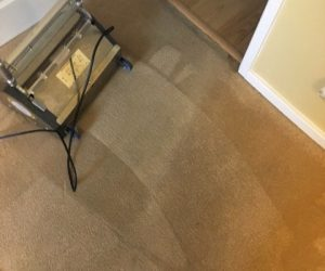 carpet cleaner in stoke on trent