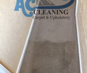 carpet cleaning stoke on trent