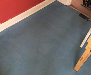newcastle-under-lyme carpet cleaning